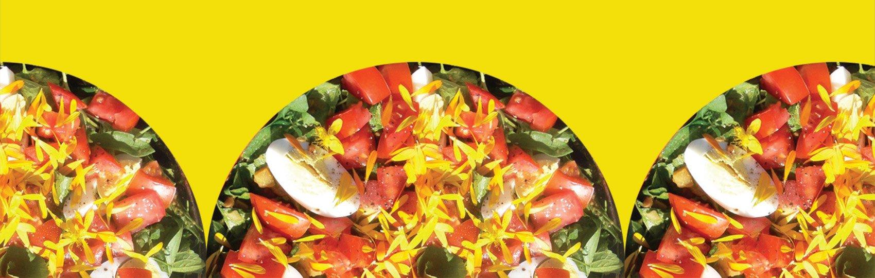 Mujaji - Salad of the Encumbent